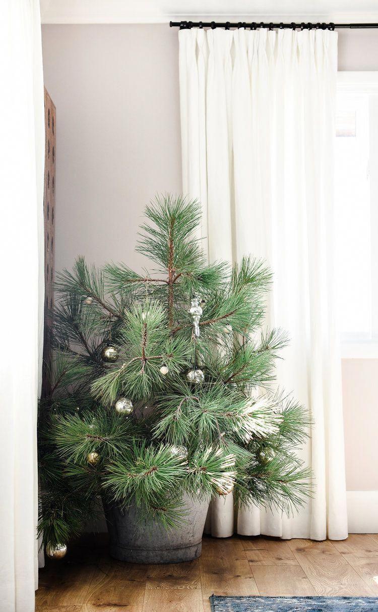 Christmas Tree Shop Jobs Middleboro Ma Christmas Movies Tim Allen