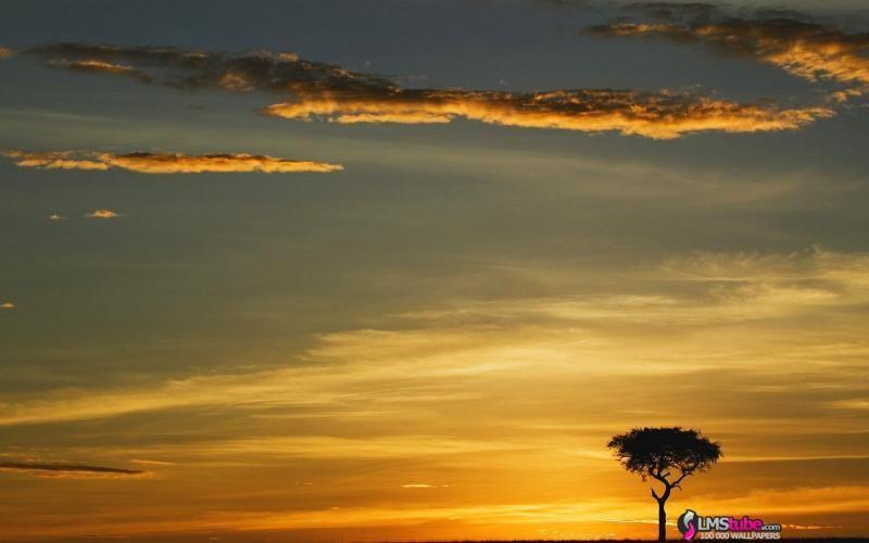 Images Fond Ecran 1280x1024 Fond D Ecran Afrique N 22363 Au Format 1280x1024 Wallpapers Afrique Image Fond Ecran Coucher De Soleil