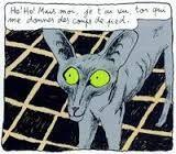 """Résultat de recherche d'images pour """"chat du rabbin"""""""