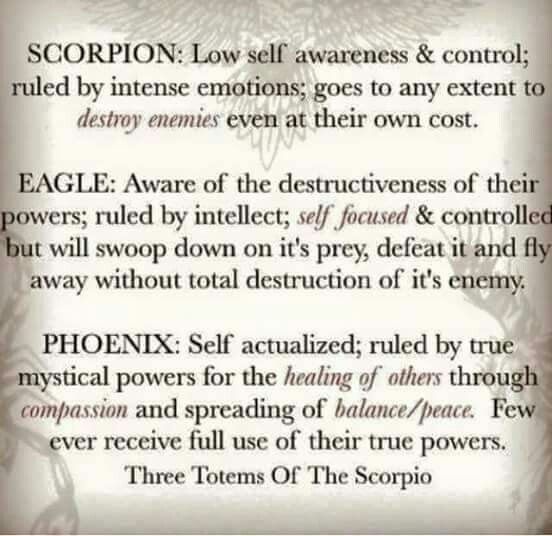 What Is A Scorpios Personality?
