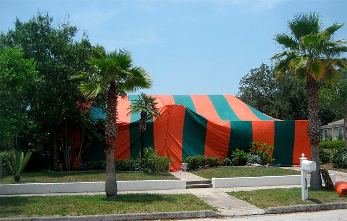 Explore Pest Control Seals and more! & Termite Fumigation sometimes called tenting is a procedure using ...