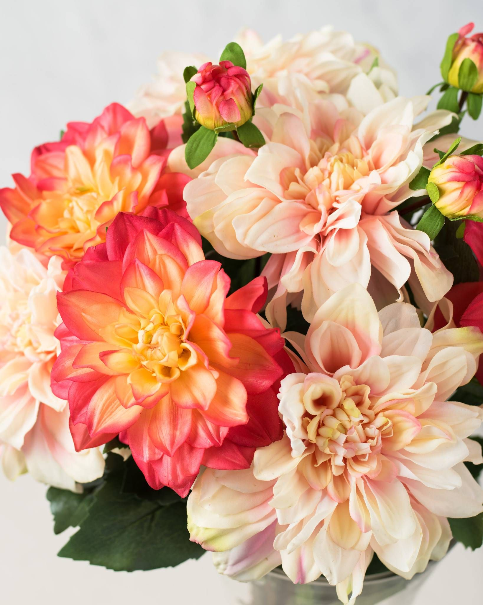 Peach and light pink dahlia flower stems spring florals enjoy the beauty of magenta or peach blooms with our exclusive dahlia flower stems shop this and other artificial flower arrangements on balsam hill today izmirmasajfo