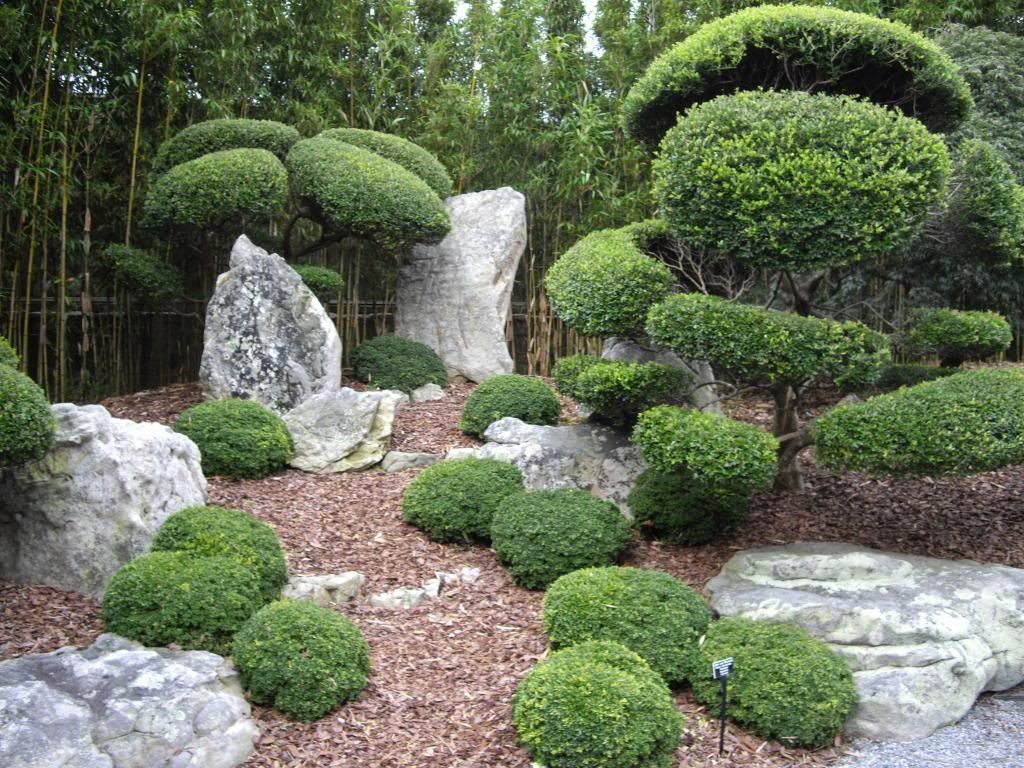 Buddhist Ceremony Traditional Japanese Garden: Japanese Garden With Boulders And Shrubs