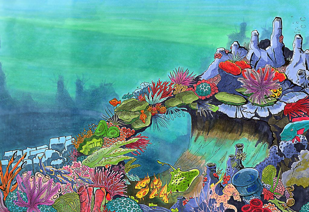 Deep Sea Coral Reef By Dodobirdz2 Coral Painting Coral Reef
