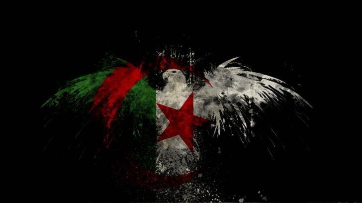 Algerian Flag Algeria Done Wallpaper Hd Wallpaper Drapeau Alger
