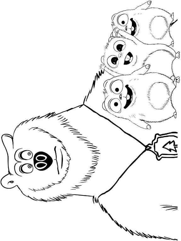 Resultat De Recherche D Images Pour Coloriage Grizzly Et Les