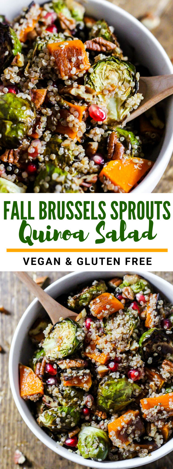 Fall Brussels Sprouts Quinoa Salad  - Vegetarian and Vegan Recipes -