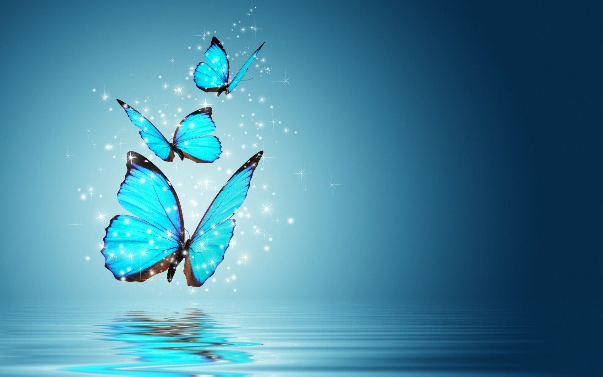Butterfly Wallpaper 19201200 Butterfly Wallpaper Backgrounds Blue Butterfly Wallpaper Butterfly Background