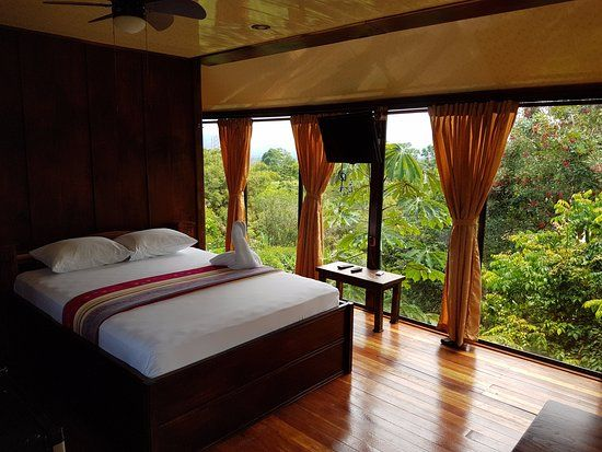 Heliconias Nature Lodge, Arenal Volcano National Park: See 163 traveler reviews, 150 candid photos, and great deals for Heliconias Nature Lodge, ranked #8 of 66 hotels in Arenal Volcano National Park and rated 5 of 5 at TripAdvisor.