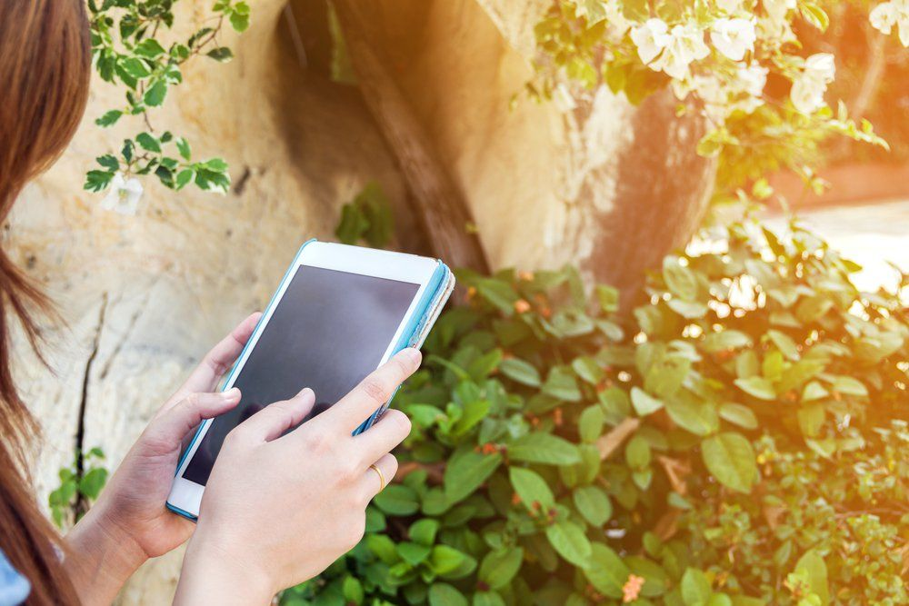 4 High Tech Garden Gadgets For Gardening In The 21st Century