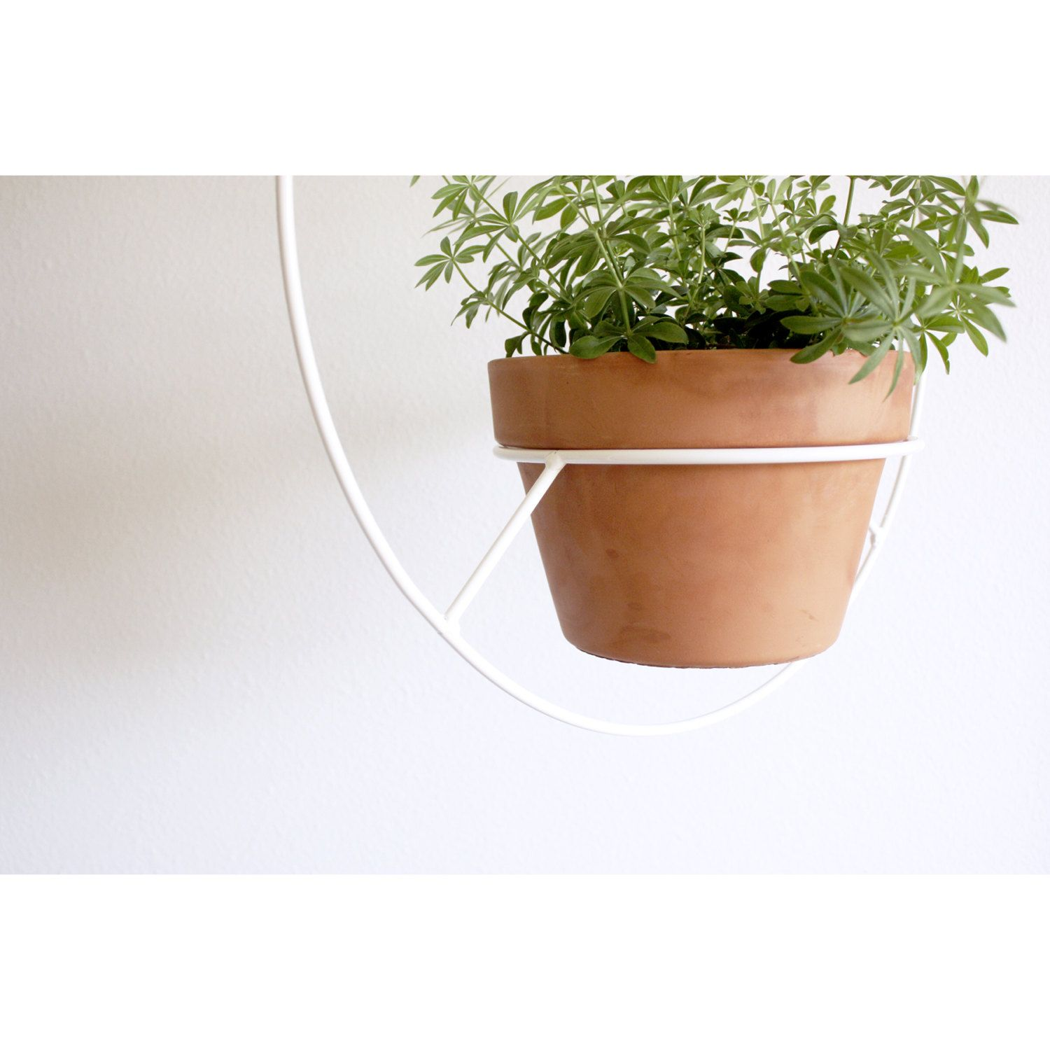 Made In Los Angeles White Metal Hanging Planter Round Mid Century Plant Holder Circular Modern Plant Hanger Minimalist Plant Stand Metal Hanging Planters Hanging Planters Metal Plant Hangers