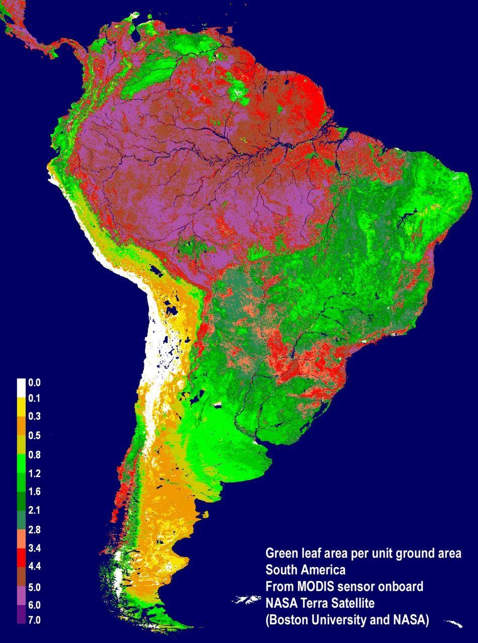 Rainforest Deforestation Global Warming Google Search Amazon