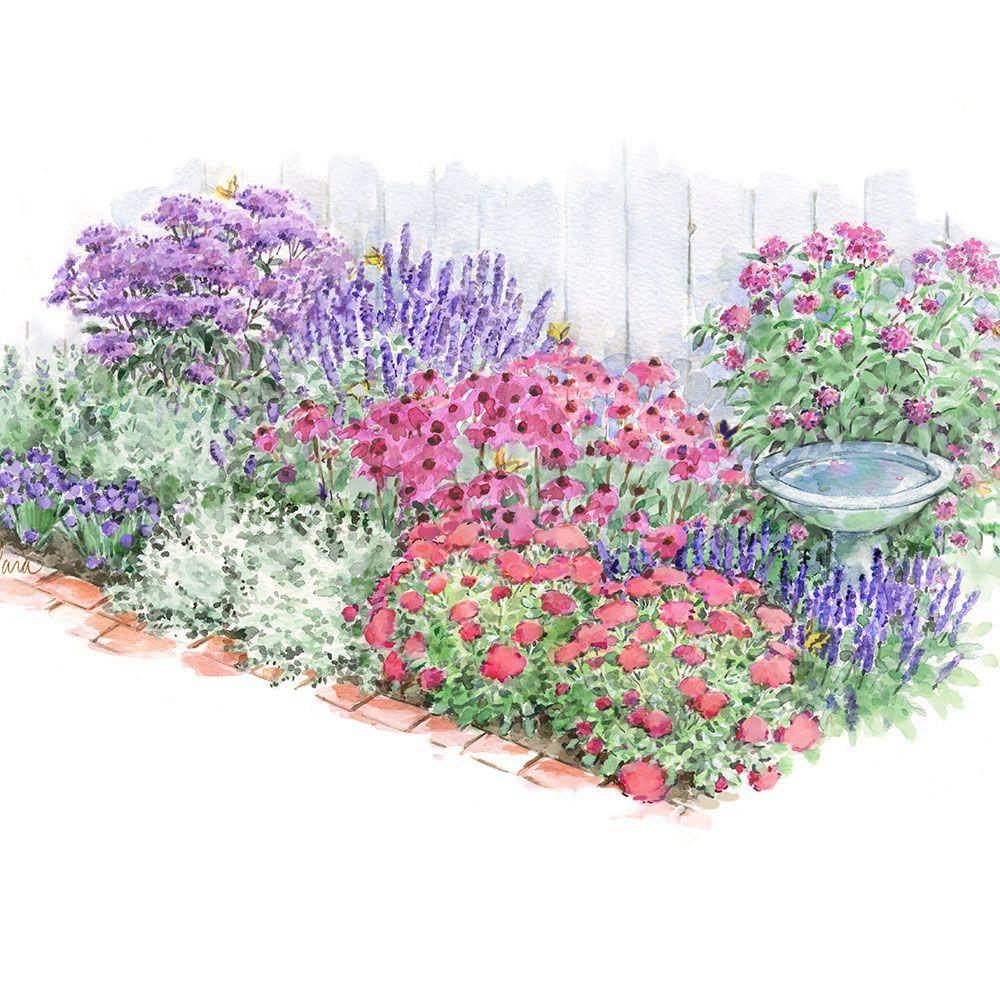 Pollinator Bulb Perennial Garden Perennial Garden White Flower Farm Container Herb Garden