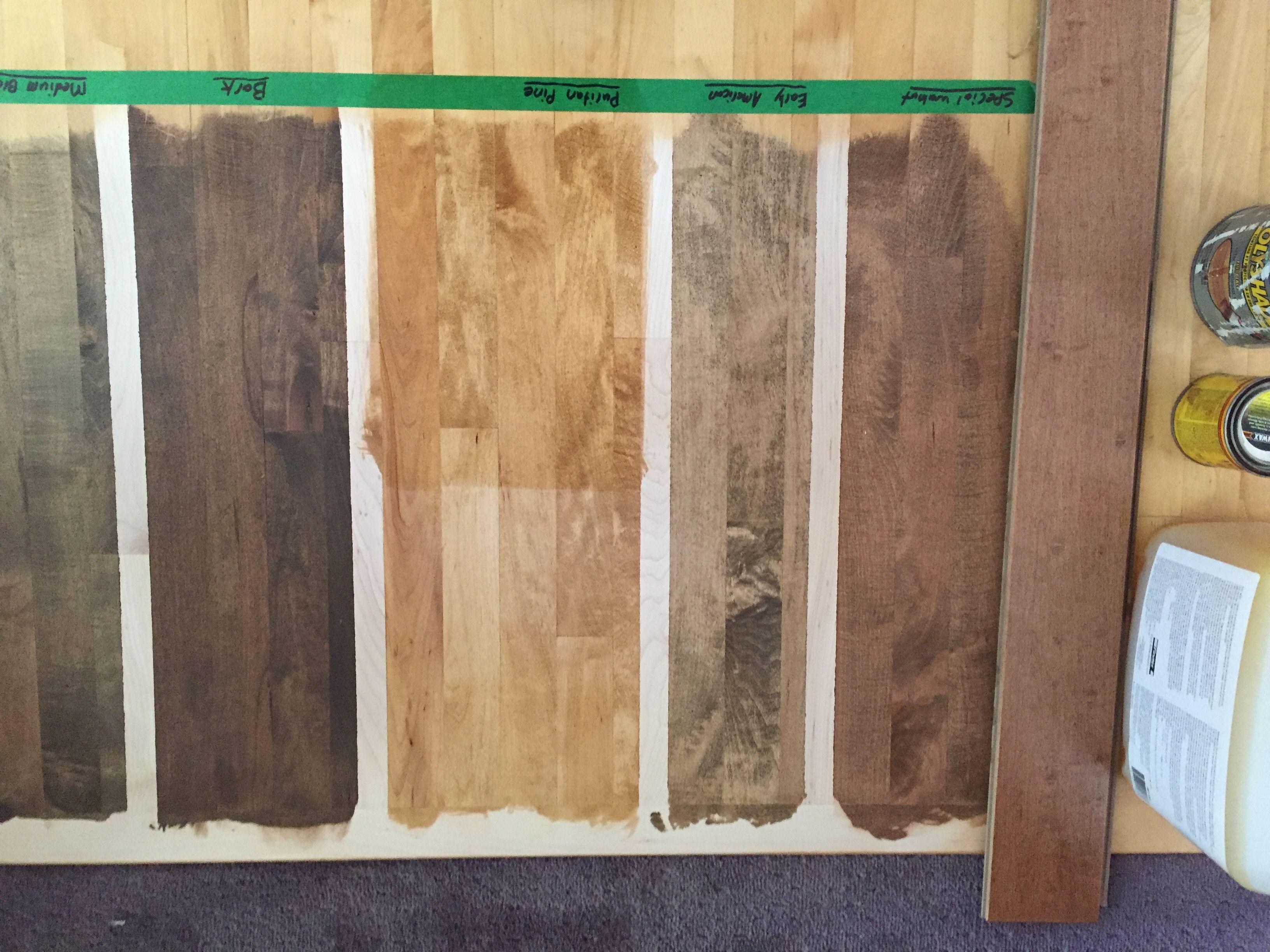 Bona Stain Samples On Maple Maple Floors Staining Wood Wood