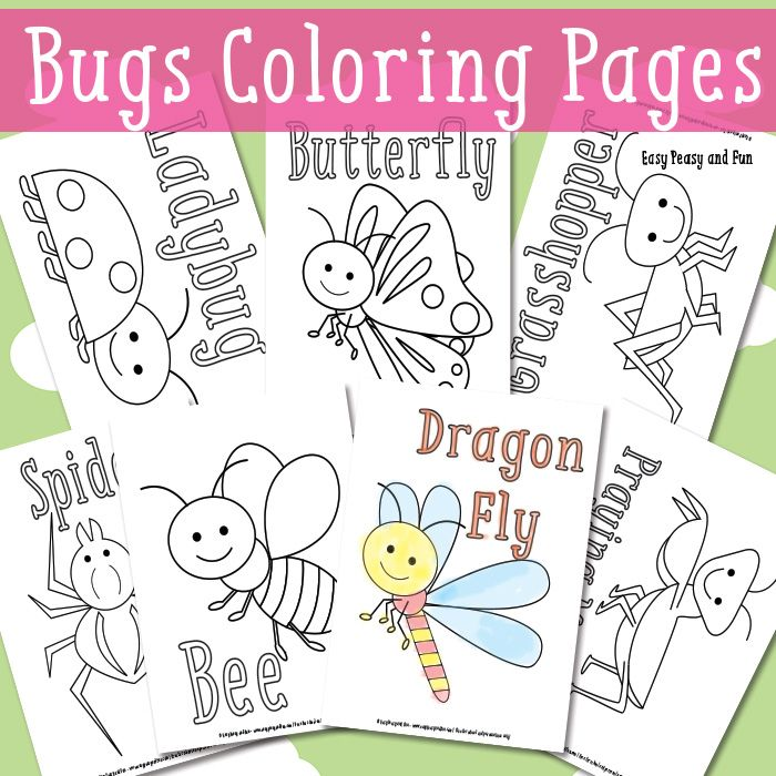 Little Bugs Coloring Pages for Kids | Insectos, Colorear y Imprimibles