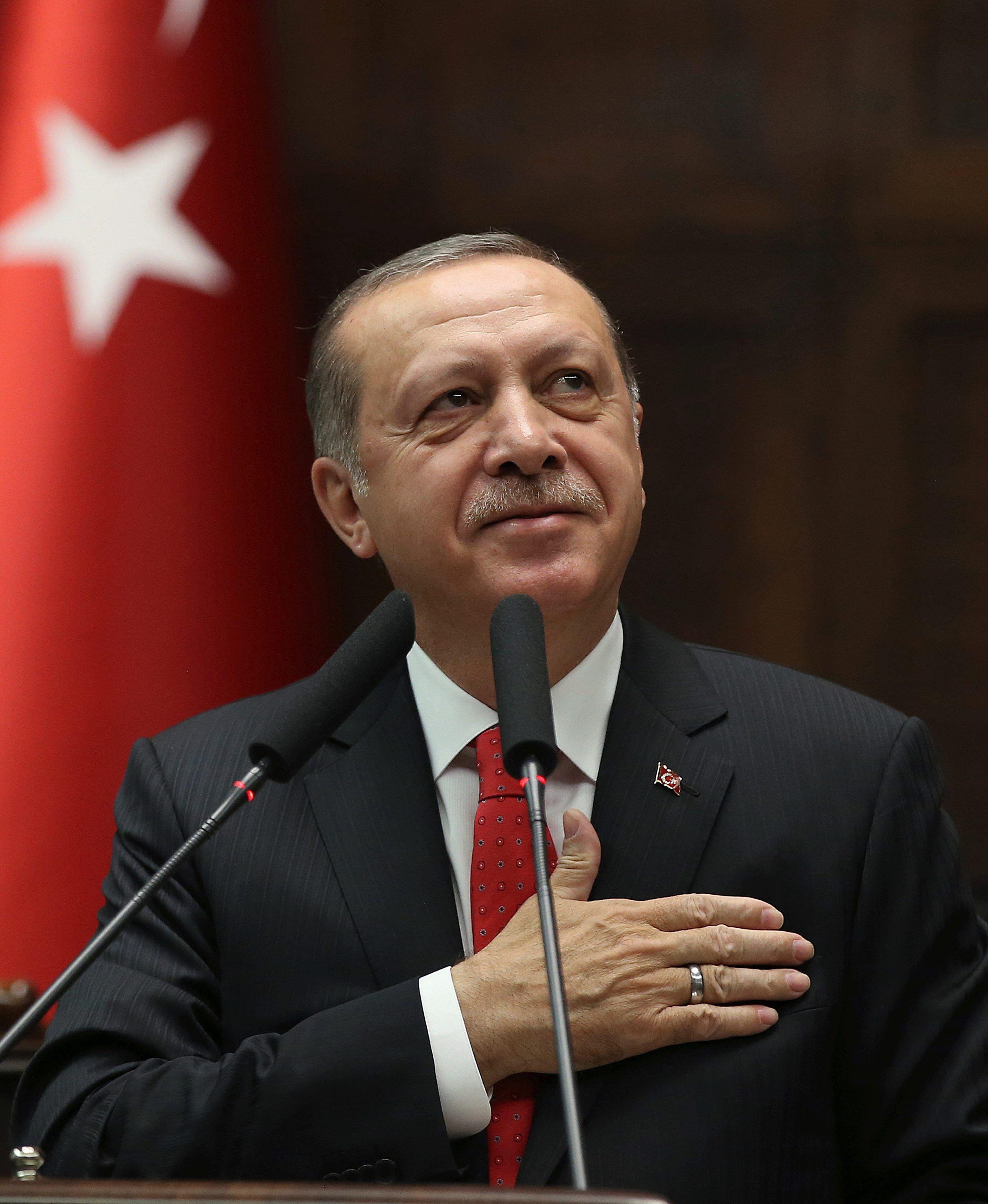 Wiki Erdogan