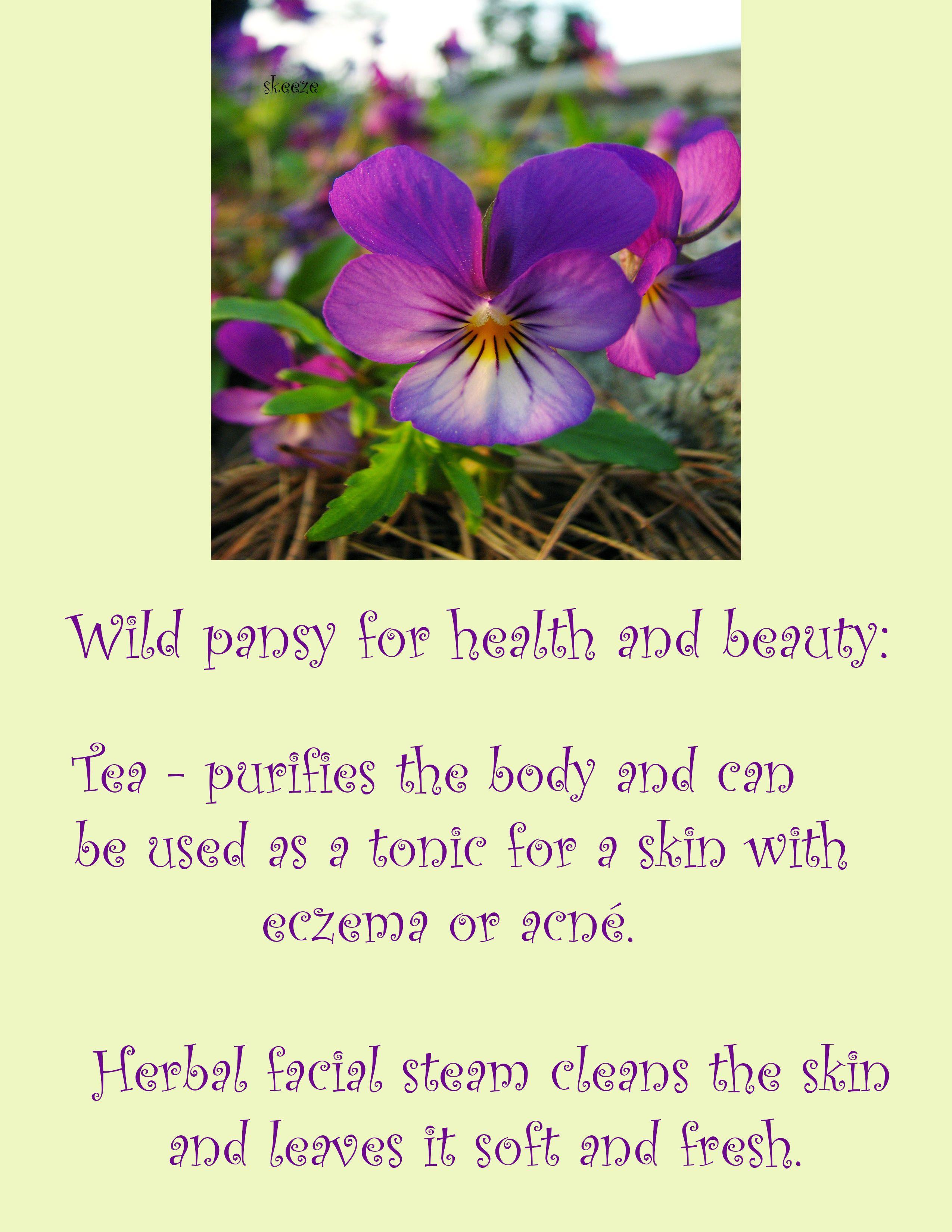 Epingle Par Bykob 87 Sur Herbs