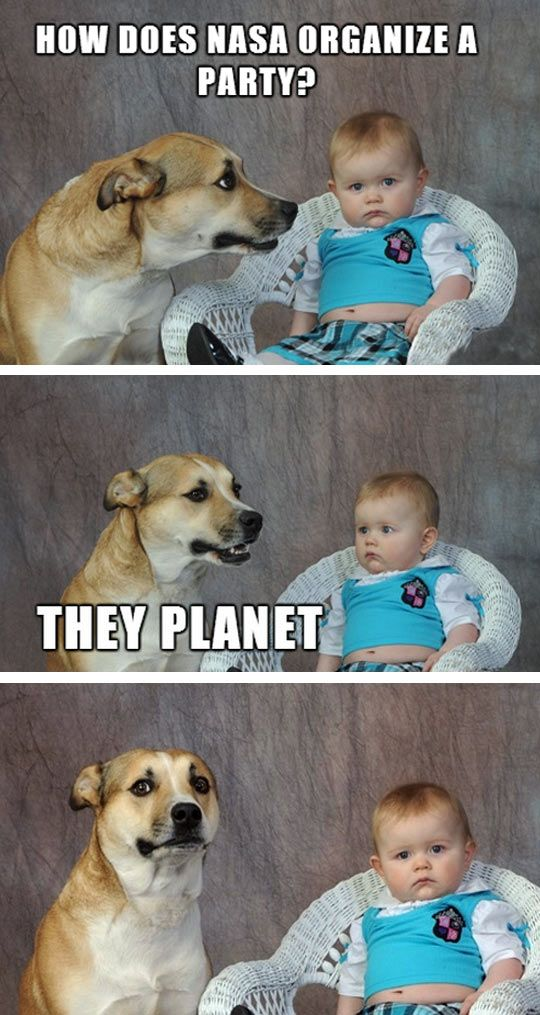 Dad Joke Dog Funny Animal Jokes Dog Jokes Funny Puns