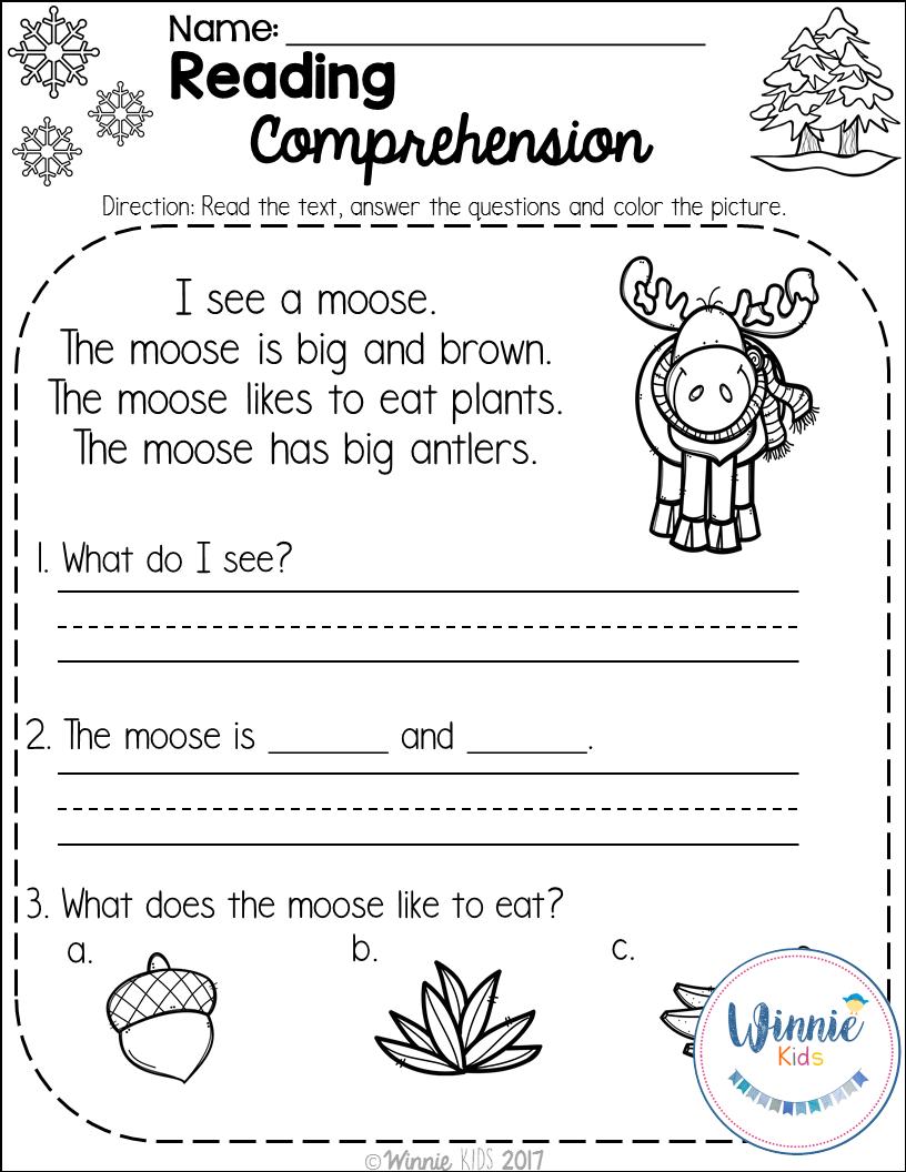 Kindergarten Reading Comprehension Passages - Winter ...