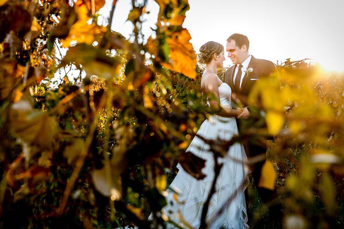 Virginia wine country wedding at bluemont vineyard fall vineyard