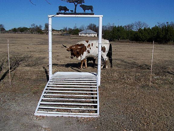 Texas Ranch Gate Want A South Texas Ranch Buy One