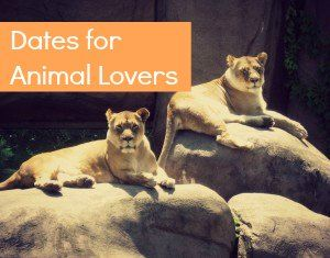 dating sites for wildlife lovers