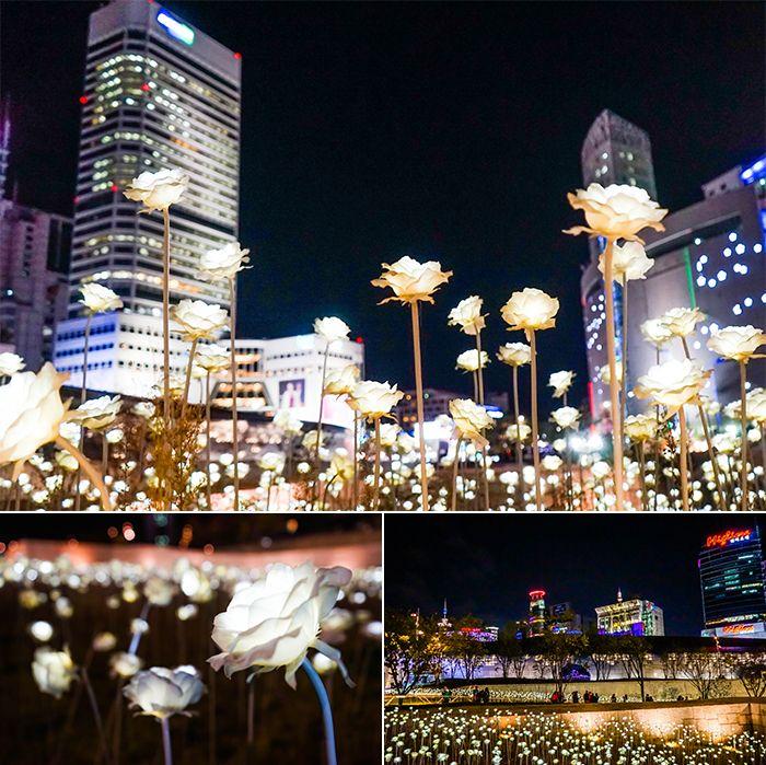 Dongdaemun Design Plaza Ddp Led Rose Garden Plastic Flowers South Korea Light