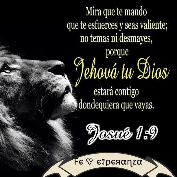 Versiculos De La Biblia De Animo: Pin De Fє ಌ єรρєяαɳzα En Versiculos Biblicos