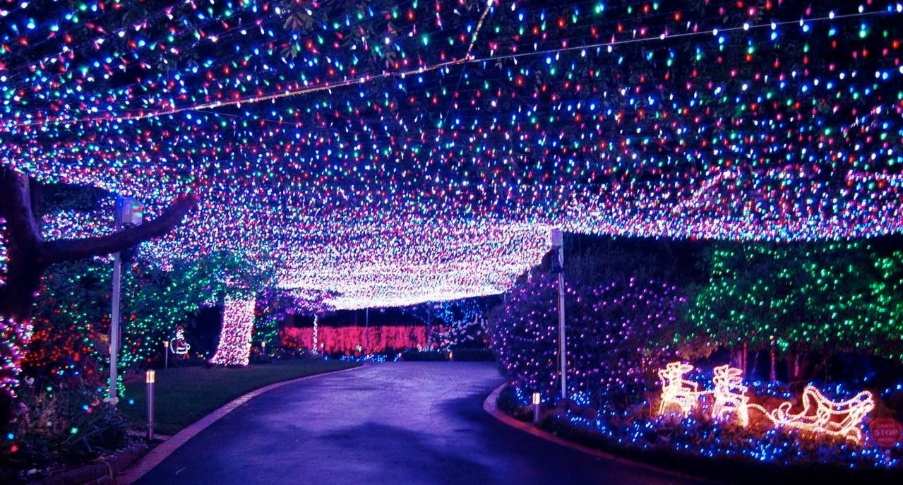 According To Kidzworld Com The Property In The Canberra Suburb Of Forrest In Australia Is Illum Christmas House Lights Best Christmas Lights Christmas Lights