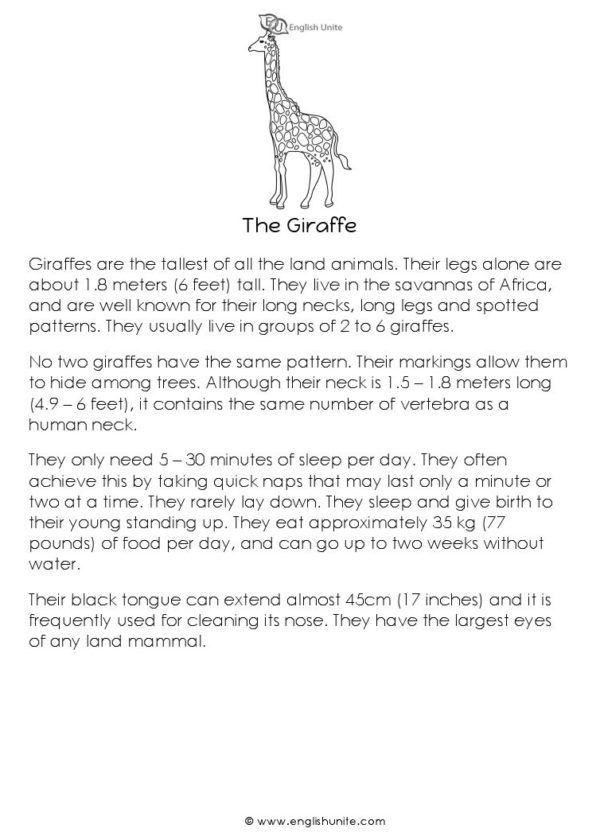 Short Story - The Honey Bee   Reading   Pinterest   Reading passages ...