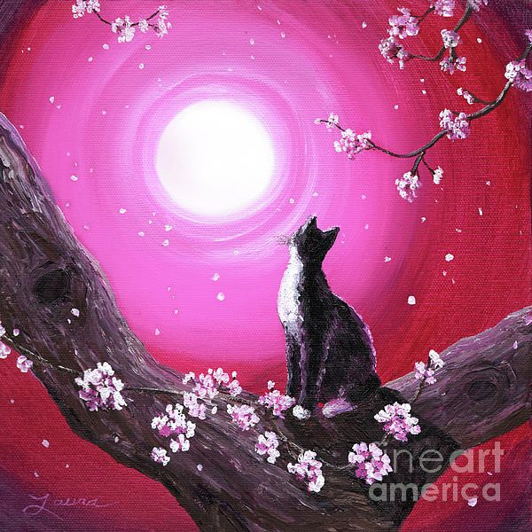 Just Beautiful Cherry Blossom Art Blossoms Art Cat Painting