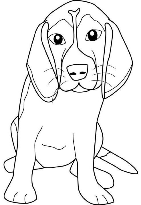 Beagle Teenagers Coloring Pages Puppy Coloring Pages Dog