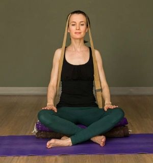 a straplover's compendium practice for the legs  hatha