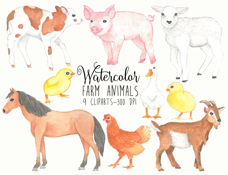 Farm Animals Clipart Watercolor Farm Clipart Farm Watercolor Clip Art Farm Animal Domestic Animals Kids Clipart Farm Clip A Animal Clipart Animals Farm Animals