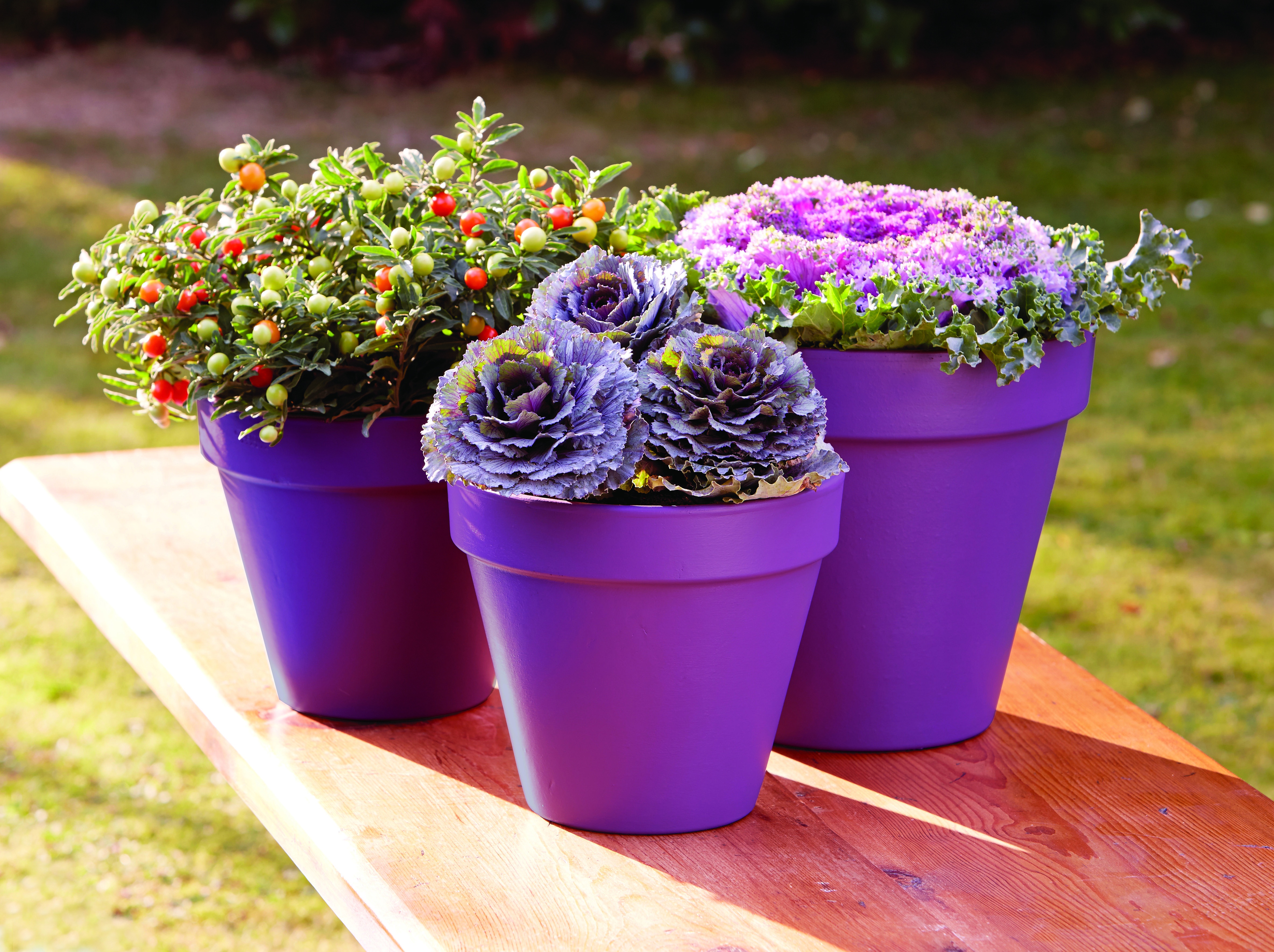 Ronseal chalky furniture paint ronseal - Ronseal Garden Paint Purple Berry Plant Pots