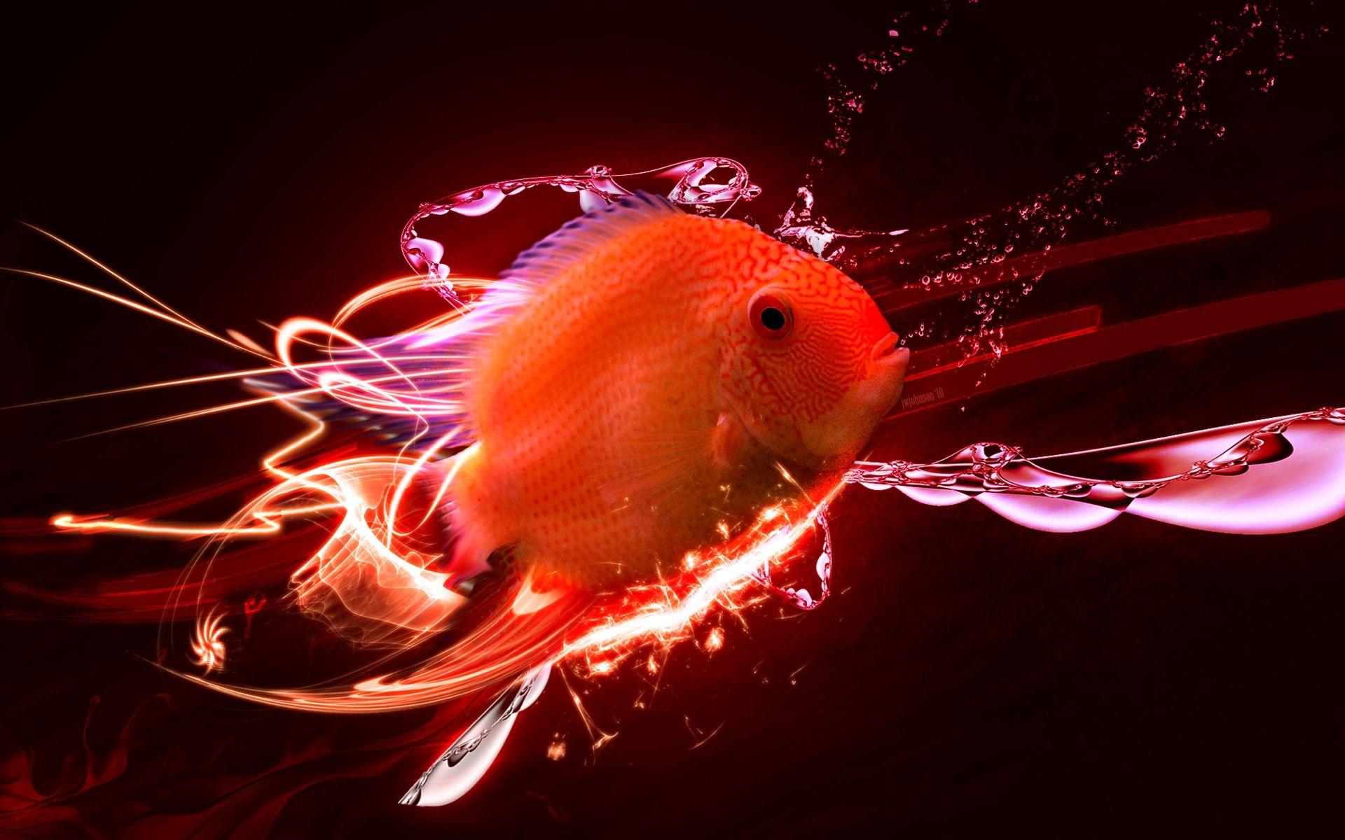Beautiful Fish The Deep Blue Sea Ocean Wallpaper
