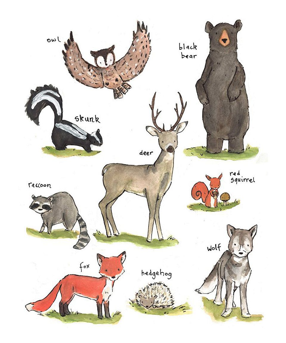 This Forest Friends Print by trafalgar's square is perfect