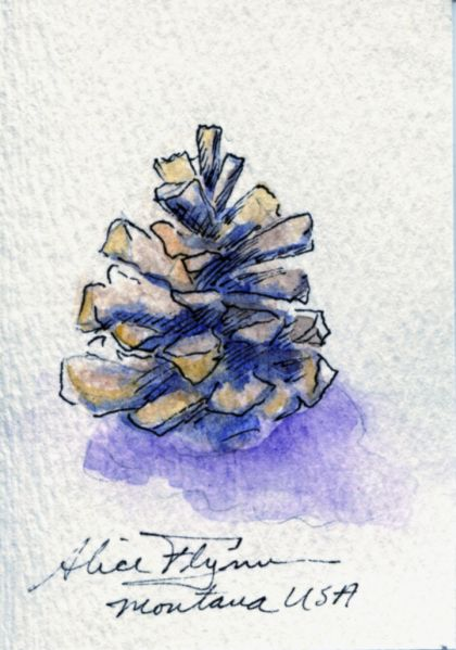 Art Trading Card Pinecone Watercolor By Alice Flynn Watercolor