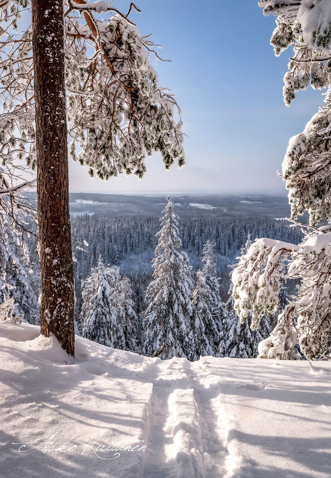 Hiihtoloma Finland By Asko Kuittinen Winter Landscape Winter Landscape Photography Winter Scenery