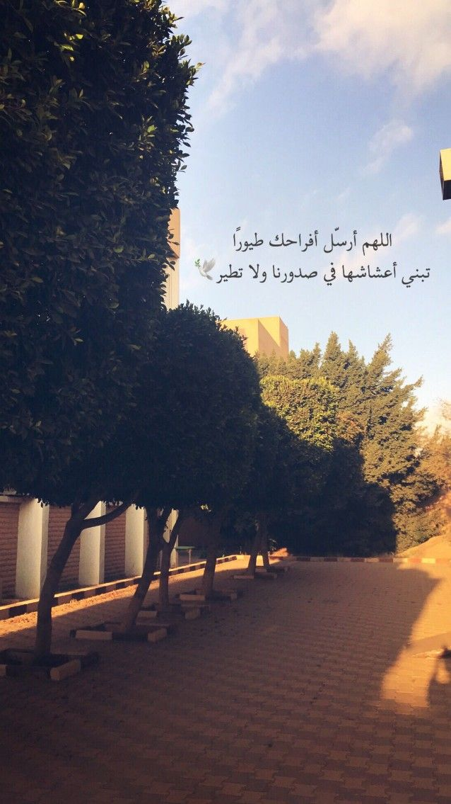 Pin By Riam On Aaaaaسنابات Beautiful Arabic Words Arabic Quotes Talking Quotes
