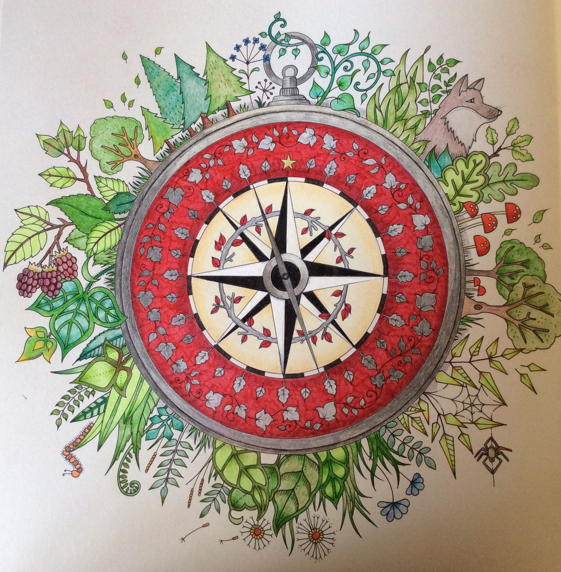 Enchanted Forest Compass