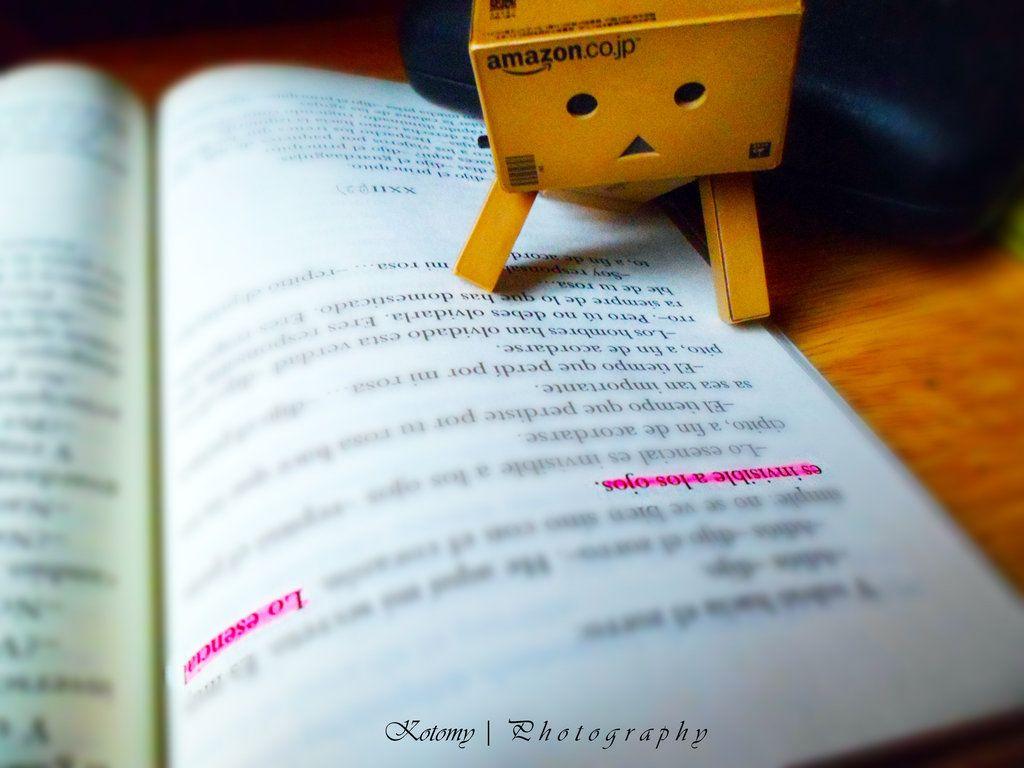 Danbo reading. by Missorys on deviantART