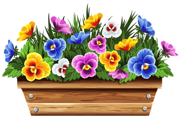 Box with Violets PNG Clipart Picture Flores de madeira