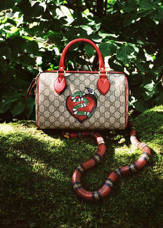 Limited Edition Gg Supreme Top Handle Bag Gucci Gg Top Handle Bag 409527 Gucci Gg Handle Bag Gucci Leather Top Handle Bags Womens Designer Purses Gucci Gifts