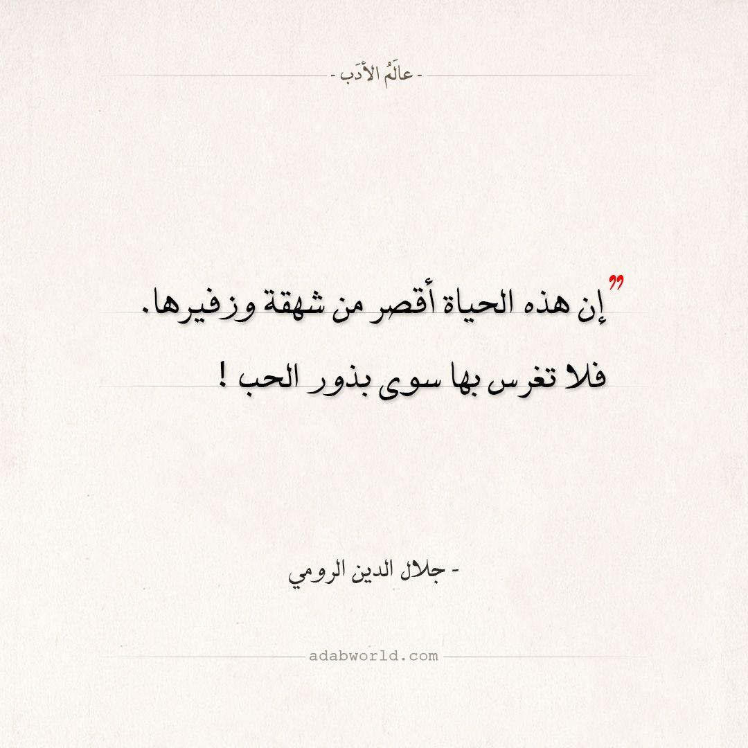 اقتباسات جلال الدين الرومي بذور الحب عالم الأدب Words Quotes Quotes Deep Iphone Wallpaper Quotes Love