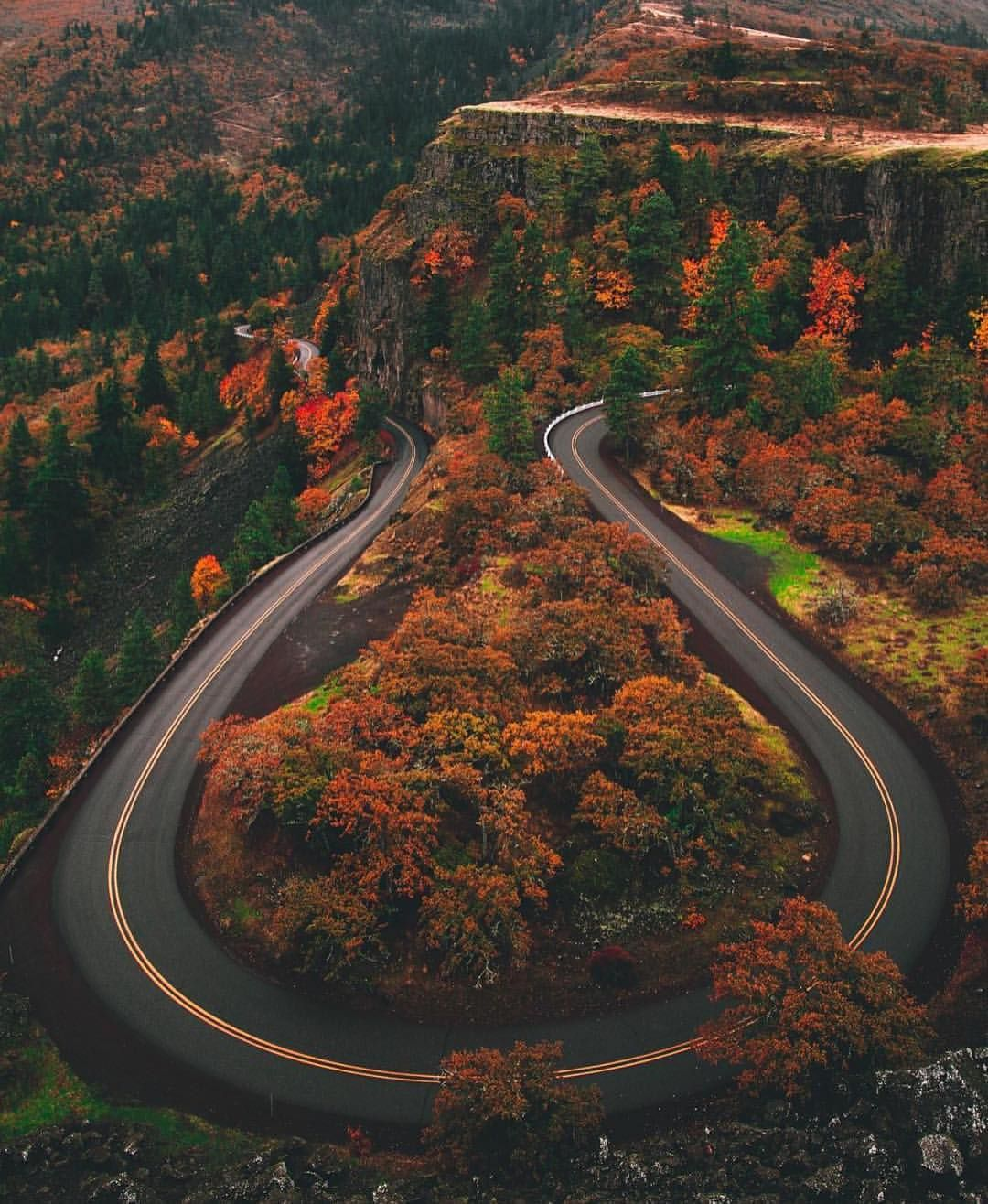 Colors Are A Changing At Rowena Crest Photo By Abstractive Croig Caferacersofinstagram At Rowena Crest Beautiful Roads Camping World Travel Beauty
