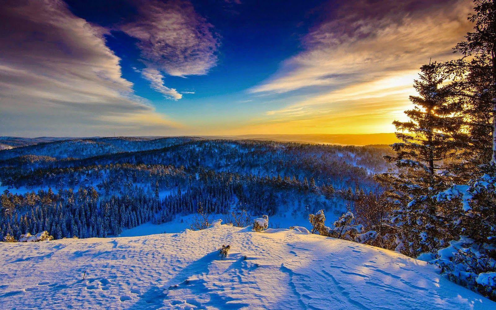 Wald Winter Schnee Landschaften Desktop Hintergrund Hintergrund Desktop Bilder