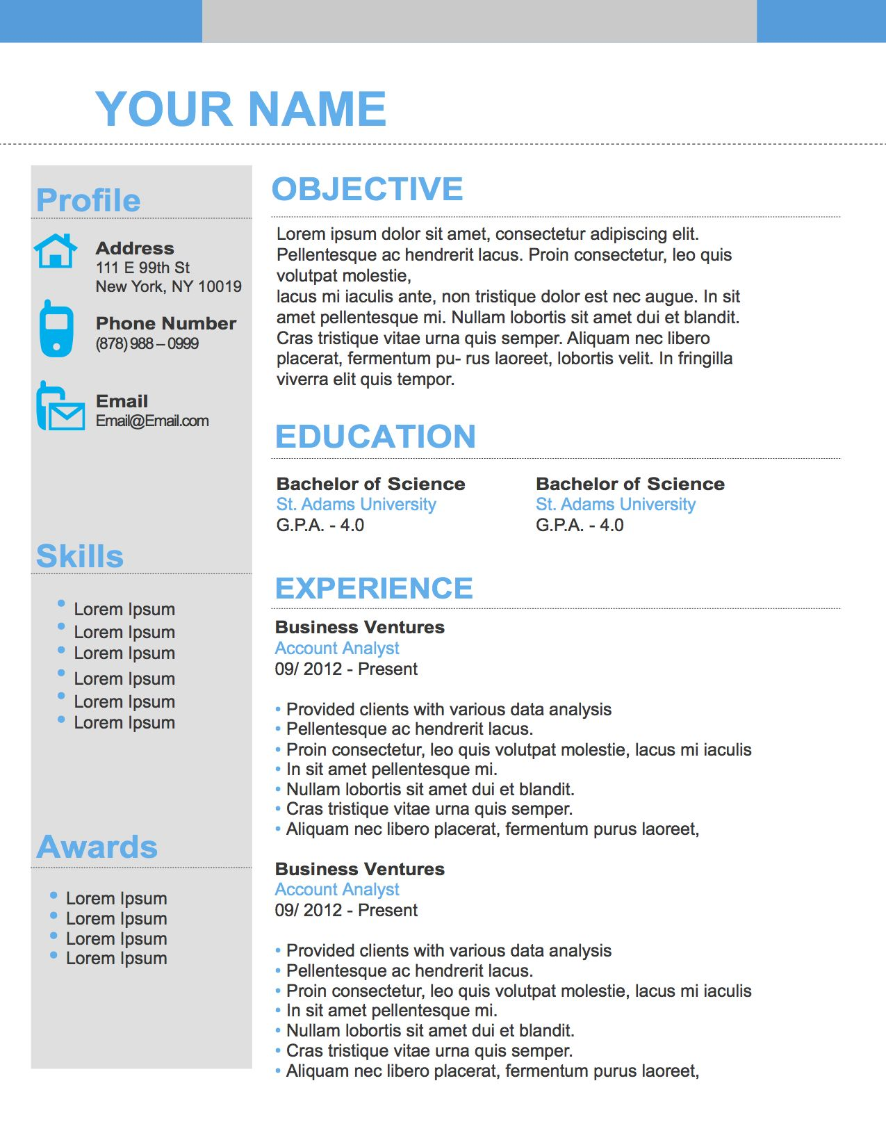 Number One Resume Template Resume template, First resume