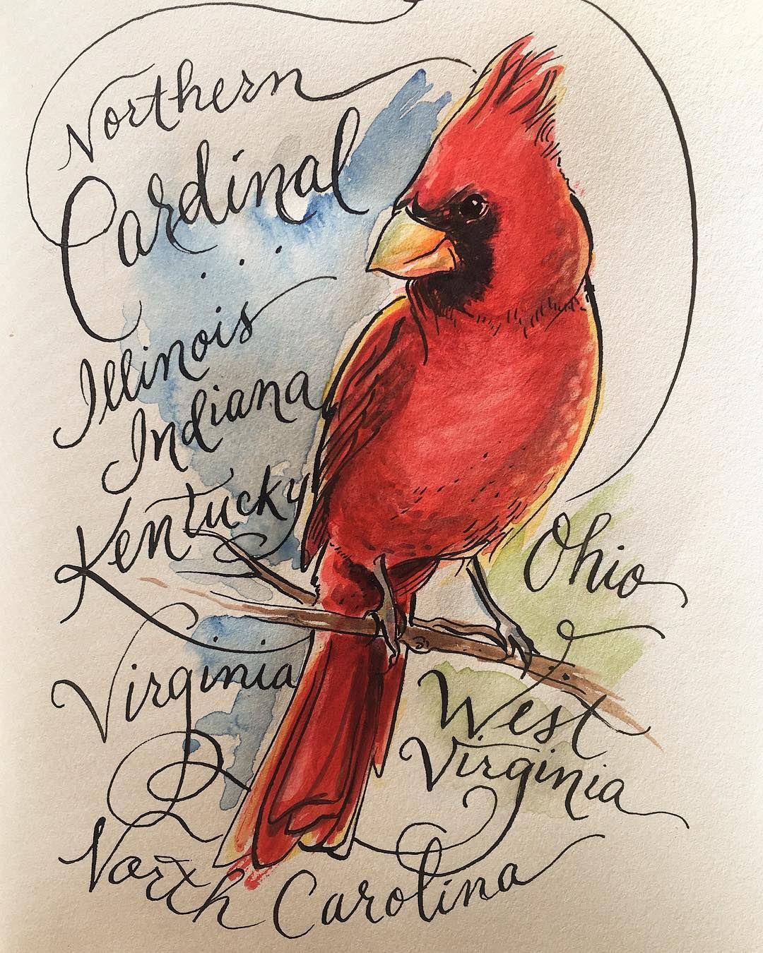 Richmond Artist Laura Marr Paints Virginia S State Bird