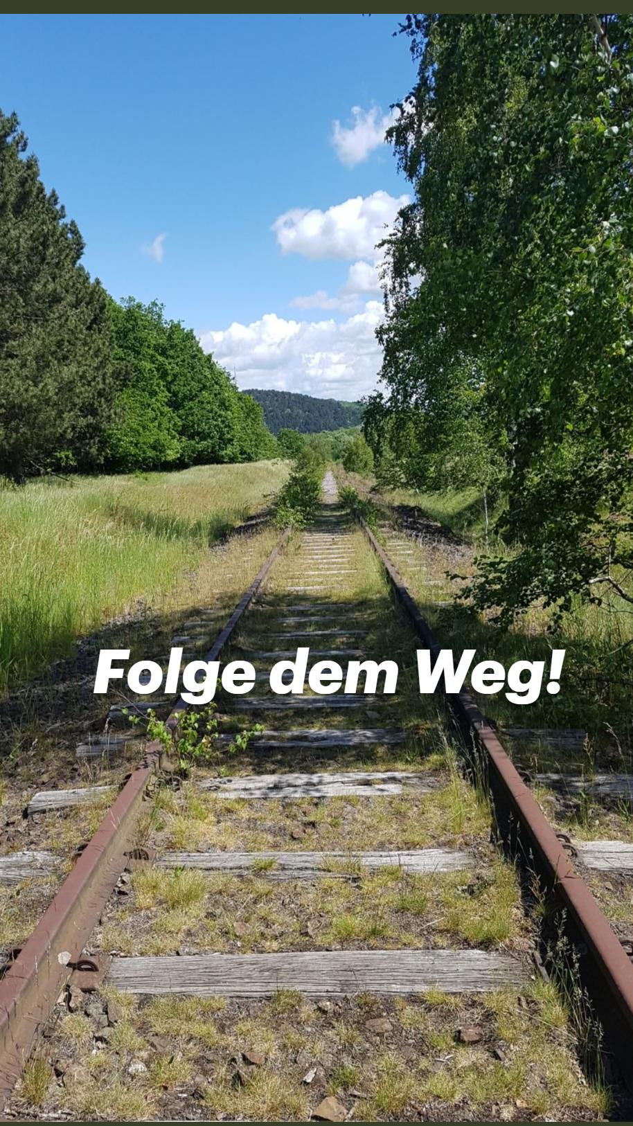 Tipp: Wandertour um Goslar, Harz  Weinberg bis SteinbErg